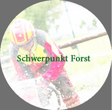 Schwerpunktfach Forst